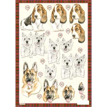 Craft UK Stansvel A4 Honden (2)