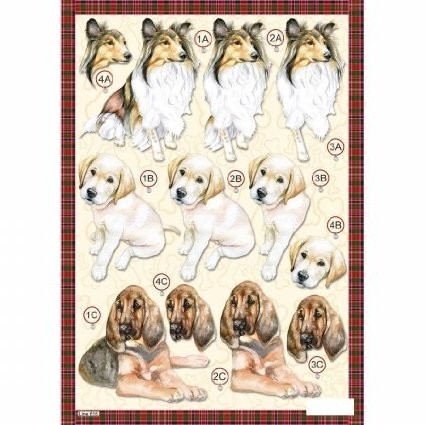 Craft UK Stansvel A4 Honden Collie