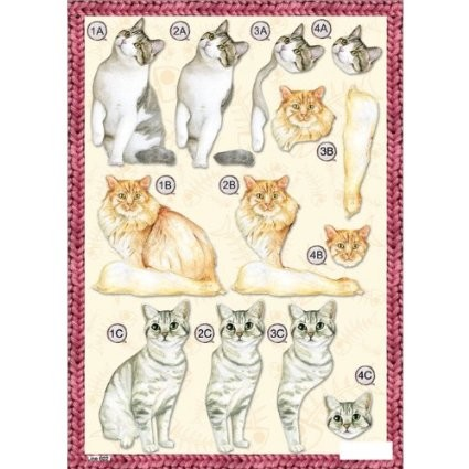 Craft UK Stansvel A4 Cats (2)