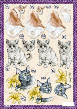 Craft UK Stansvel A4 Cats