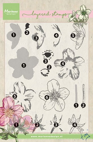 Marianne Design - Clear Stamp - Tiny`s Helleborus (Layering)