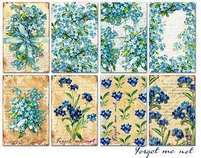 Decorer - Scrapbook Paper Mini - Forget me not