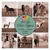 Dixi Craft - Toppers  - Horses sepia